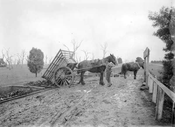History of the Traralgon-Stratford railway