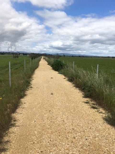 Weed Spraying & Slashing the Trail